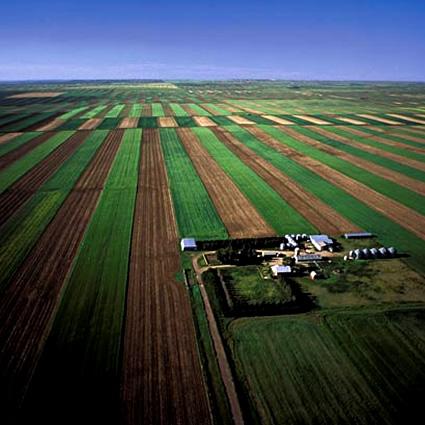 Risultati immagini per acqua agricoltura intensiva