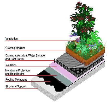 Architettura sostenibile tetti e coperture verdi 5 for Domande per i costruttori di case