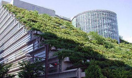 tetti_verdi_copertura_verde_giardino_pensile_architettura_sostenibile_giardini_verticali