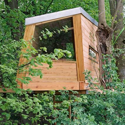 Una casa sull albero fra lusso stile di vita e soluzione for Case in legno sugli alberi
