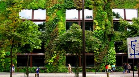 Architettura sostenibile giardini verticali avanti forme for Giardino verticale