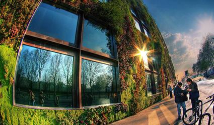 giardini_verticali_giardino_verticale_patrick_blanc_giardini_verticali ...
