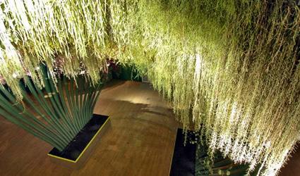 giardini_verticali_giardino_verticale_patrick_blanc_giardini_verticali_sophia_los_gea_teracrea_giardino_verticale_architettura_sostenibile_muro_verde