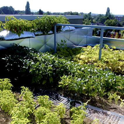 Come realizzare un giardino pensile o un tetto verde in 5 passi - Realizzare un giardino ...