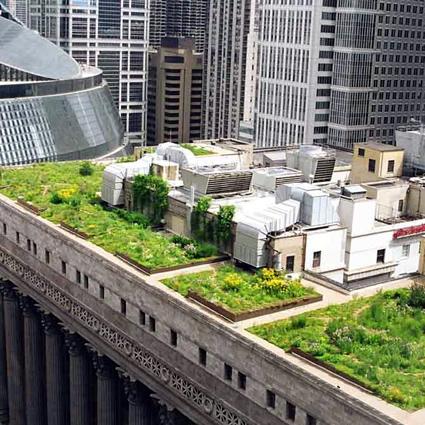 Come realizzare un giardino pensile o un tetto verde in 5 - Terrazzi e giardini pensili ...