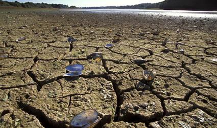 http://www.genitronsviluppo.com/ecologia/consumo_acqua_consumo_risorse_idriche_consumo_acqua_dolce_consumare_acqua_risparmiare_acqua_risparmio_idrico_risparmiare_risorse_idriche_10.jpg