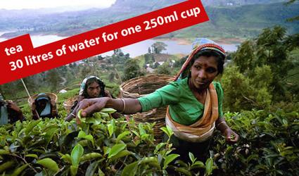 http://www.genitronsviluppo.com/ecologia/consumo_acqua_consumo_risorse_idriche_consumo_acqua_dolce_consumare_acqua_risparmiare_acqua_risparmio_idrico_risparmiare_risorse_idriche_2.jpg