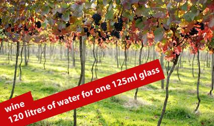 http://www.genitronsviluppo.com/ecologia/consumo_acqua_consumo_risorse_idriche_consumo_acqua_dolce_consumare_acqua_risparmiare_acqua_risparmio_idrico_risparmiare_risorse_idriche_3.jpg