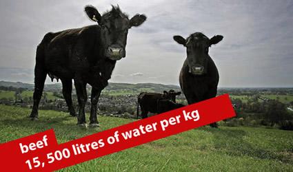 http://www.genitronsviluppo.com/ecologia/consumo_acqua_consumo_risorse_idriche_consumo_acqua_dolce_consumare_acqua_risparmiare_acqua_risparmio_idrico_risparmiare_risorse_idriche_4.jpg