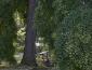 bioenergetic_landscapes_marco_nieri_ecodesigner_bioenergetic_landscapes_giardino_terapeutico_1