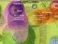 bioenergetic_landscapes_marco_nieri_ecodesigner_bioenergetic_landscapes_giardino_terapeutico_7