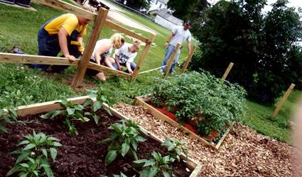 Guida ad un giardinaggio sostenibile 10 modi e per for Abbellire un giardino