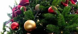 albero_di_natale_natale_christmas_tree