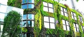 giardini_verticali_architettura_sostenibile5