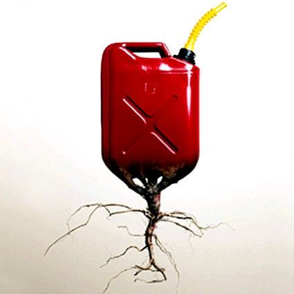 biodiesel_biocarburante_mcgyven_krohn_sartec_4