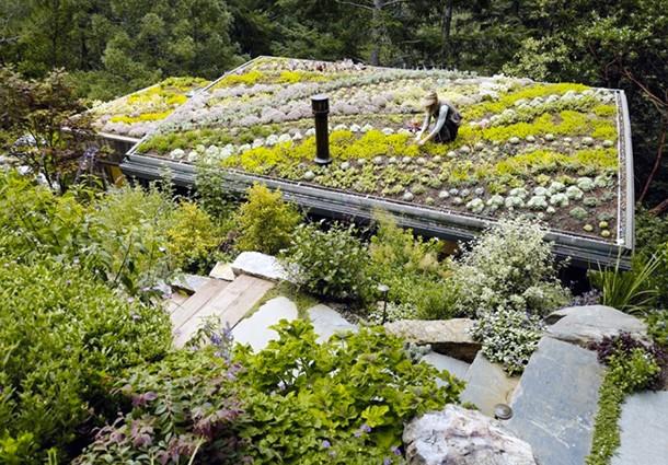 giardini-pensili-come-realizzare-tetto-verde-01