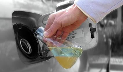biocarburanti_batteri_biocarburante_batteri_ogm_4_generazione_biocarburanti_ls9_3