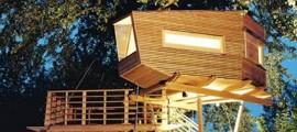 casa_sull_albero_casa_nell_albero_casa_albero_baumraum_casa_alberi_baumraum_case_alberi_1
