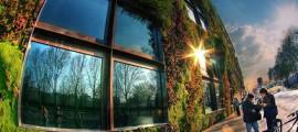 giardini_verticali_giardino_verticale_patrick_blanc_giardini_verticali_sophia_los_gea_teracrea_giardino_verticale_architettura_sostenibile_muro_verde_1