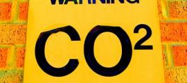 co2_assorbire_co2_alberi_finti_co2_assorbimento_co2_stoccaggio_co2_combustibile_alberi_finti_cattura_co2_emissioni_co2_5