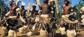 biocarburante_sostenibile_africa_biodiesel_sostenibile_africa_sviluppo_sostenibile_biocarburante_insostenibile_biodiesel_insostenibile_sviluppo_insostenibile_10