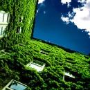 comunita_sostenibile_cohousing_sviluppo_sostenibile_comunita_sostenibili_sviluppi_sostenibili_gas_prodotti_locali_economia_locale_3