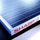 film_solare_sharp_sottile_film_solare_celle_solari_celle_fotovoltaiche_cella_solare_sottile_film_fotovoltaico_sottile_sharp_1