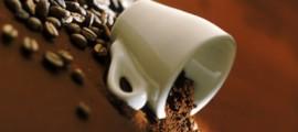 fondi_caffe_concime_design_sistemico_estrazione_lipidi_lavazza_politecnico_torino_design_sistemico_fondi_caffe_concime_4