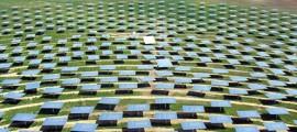 impianti_fotovoltaici_agricoltura_limoni_progetto_impianto_fotovoltaico_coltivazione_agrumi_agricoltura_energia_rinnovabile_energia_solare_2