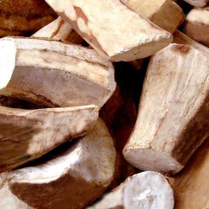 manioca_genoma_manioca_sostenibile_ogm_bioarburante_manioca_tubero_manioca_geneticamente_modificata_manioca_etanolo_2