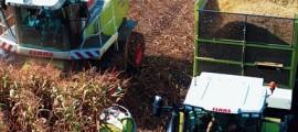 etanolo_produzione_etanolo_crisi_produzione_etanolo_impianti_4