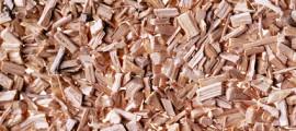 biomassa_energia_carbon_negative_biomassa_energia_carbon_free_negative_biomassa_inghilterra_5