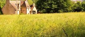 agricoltori_paesaggio_agricoltura_uplands_entry_level_stewardship_agricoltori_paesaggio_4