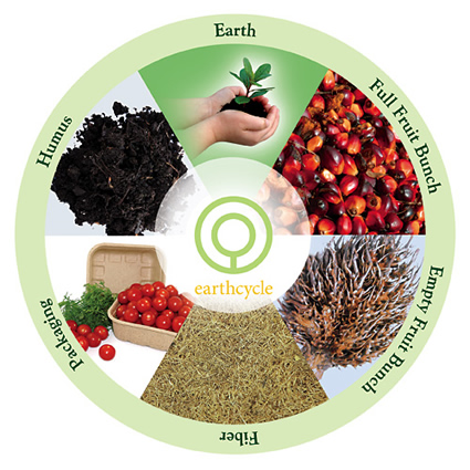 c2c_fibra_di_palma_naturale_packaging_fibra_di_palma_dalla_culla_alla_culla_c2c_confezioni_biodegradabili_1