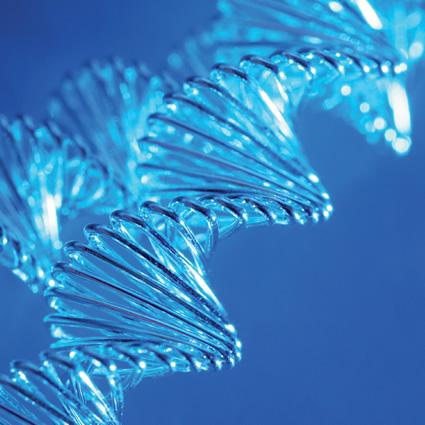 effetti_ogm_effetti_involontari_ogm_ingegneria_genetica_organismi_geneticamente_modificati_12