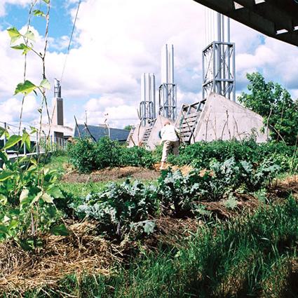 - giardino_pensile_giardini_pensili_orto_pensile_orti_pensili_agricoltura_urbana_biologica_6