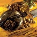medicina_tradizionale_indiana_medicina_india_brevetti_medicina_farmaci_tradizionali_indiani_4