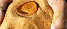 sabbia_idrofoba_agricoltura_deserto_sabbia_deserto_idrofoba_sabbia_deserto_idrofoba_agricoltura_nel_deserto_1