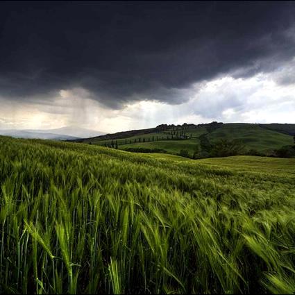 alberese_agricoltura_sostenibile_polo_agricoltura_sostenibile_toscana_polo_agroalimentare_sostenibile_arsia_7