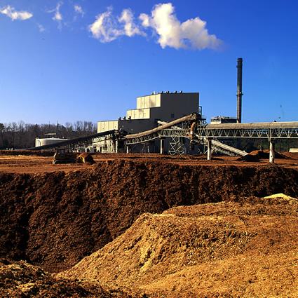 etanolo_mais_etanolo_biomassa_etanolo_cellulosa_etanolo_lignocellulosico_biocarburante_biomassa_2