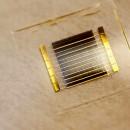 celle_solari_plastica_celle_fotovoltaiche_plastica_celle_solari_organiche_celle_fotovoltaiche_organiche_4