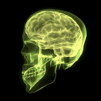 intelligenza_ecologica_daniel_goleman_lca_intelligenza_emotiva_lca_intelligenza_ecologica_lca_3