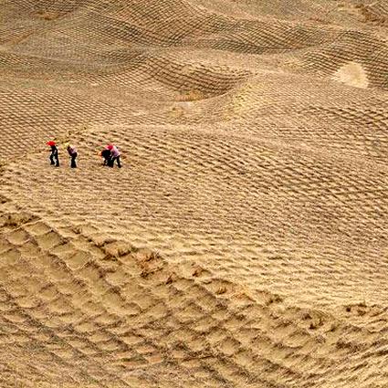 agricoltura_desertificazione_india_agricoltura_indiana_desertificazione_2