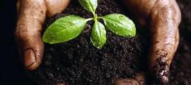 corso_agricoltura_biodinamica_3