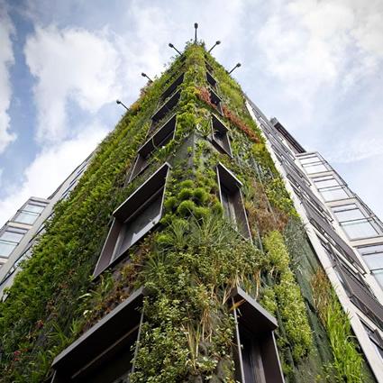 Giardini Verticali: Patrick Blanc all'Hotel Athenaeum di Londra, Contro la Gr...