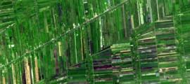 agricoltura_sostenibilie_bill_gates_tecnologie_sostenibili_gates_agricoltura_3