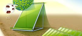 biocarburanti_4_generazione_biocarburante_co2_biocarburante_sostenibile_co2_2