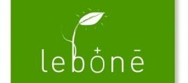 mfc_lebone_celle_combustibile_microbiche_1