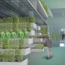 agricoltura_verticale_veil_zienda_agricola_verticale_5