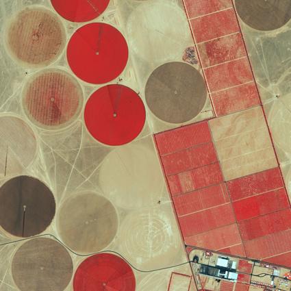 agricoltura_urbana_agricoltura_sostenibile_cambiamenti_climatici_3